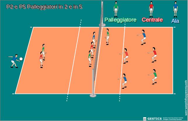 Sport e gioco notizie - Campi da pallavolo gratis stampabili ...